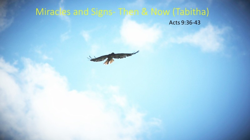 Miracles and Signs- Then & Now (Tabitha