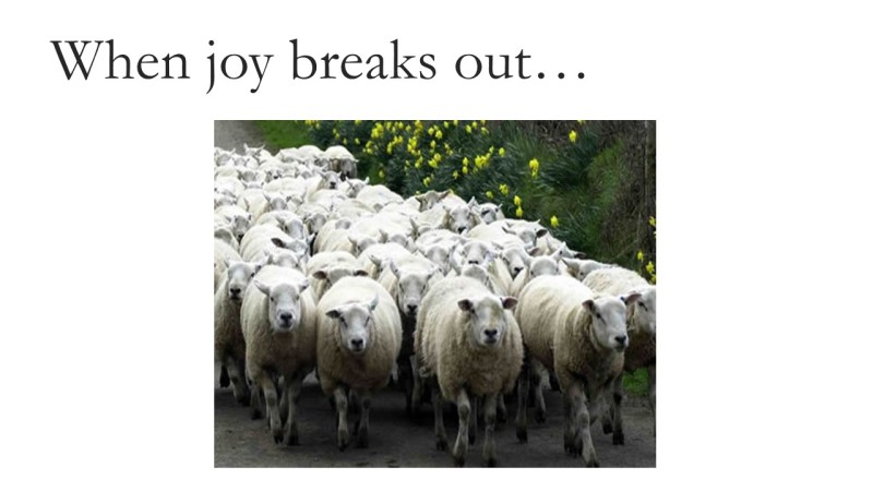 joy-breaks-out